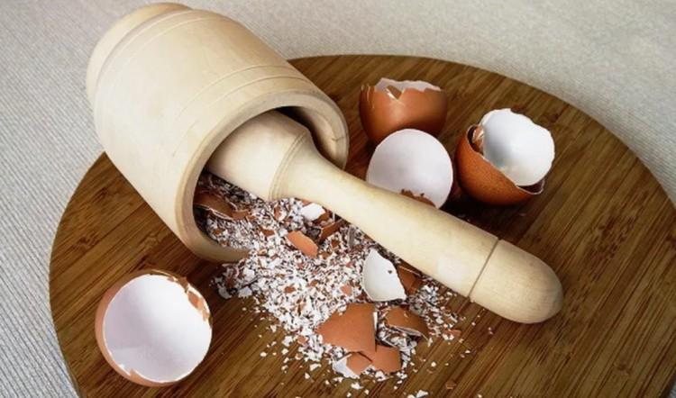 Удобрение из яичной скорлупы